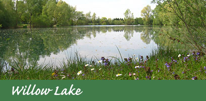 Willow-lake-2